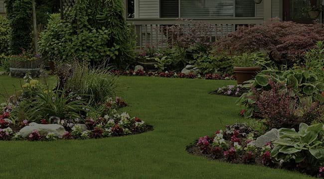 Pine Bluff Landscape Design